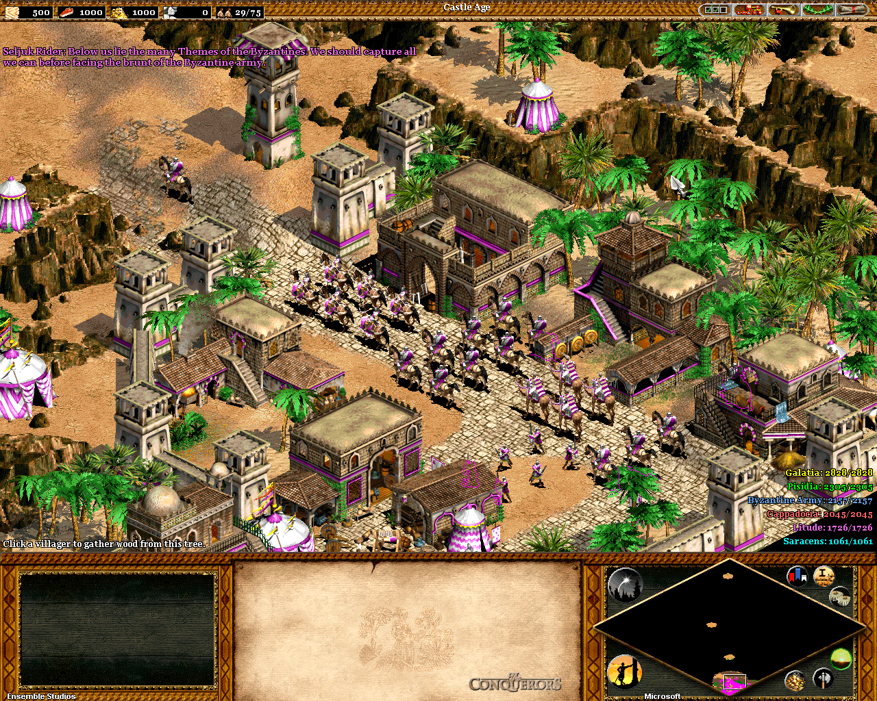 Age_of_Empires_2_The_Conquerors