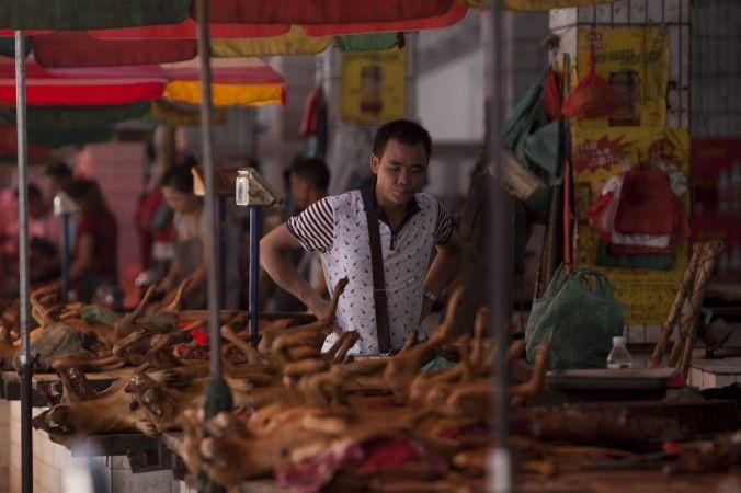 собачье мясо китай