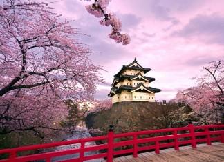 Лучшие японские пословицы и поговорки