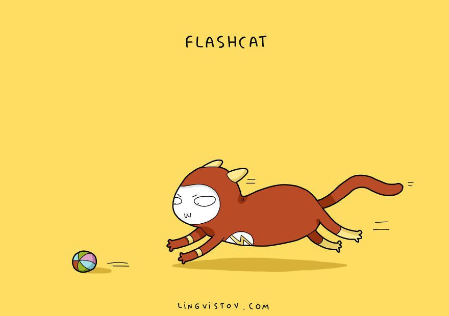 Flashcat
