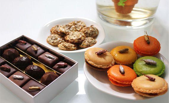 Micronutris печенье с насекомыми
