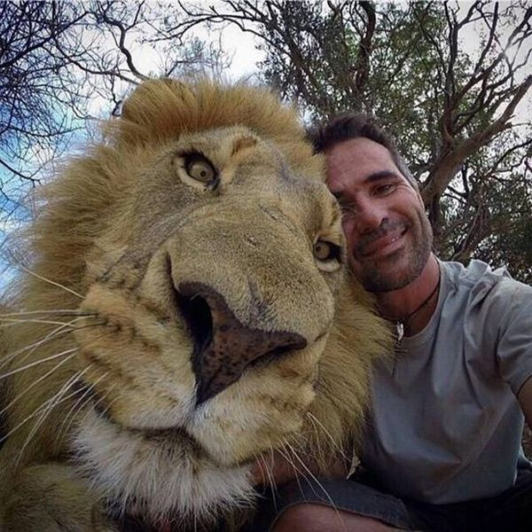 animals_selfie_03