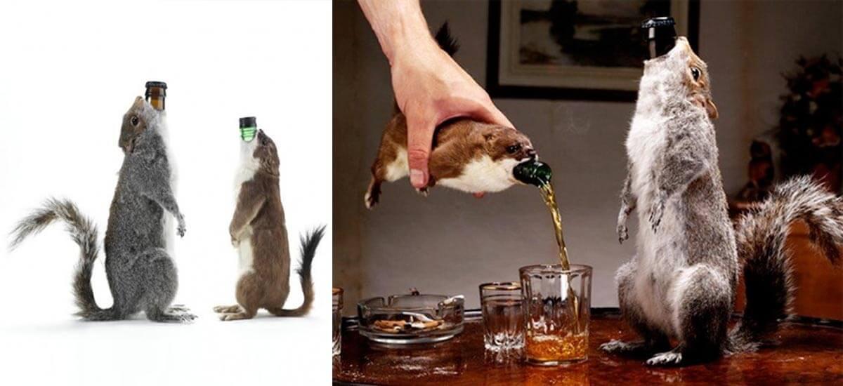 brewdog-end-of-the-world-squirrel-beer