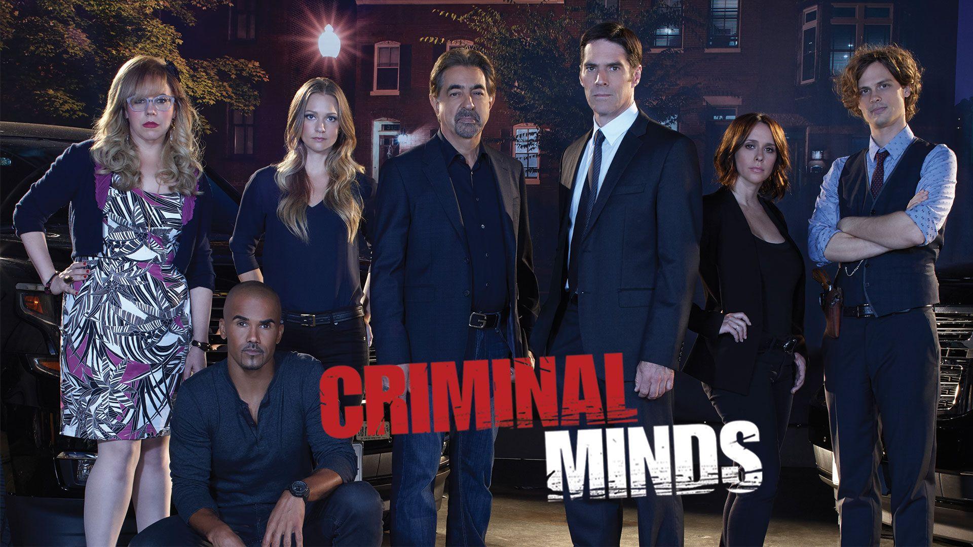 детективный сериал мыслить как преступник