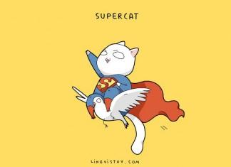 Как выглядят коты-супергерои