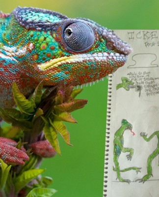 рептилоиды теория заговора