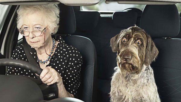 бабушка за рулем