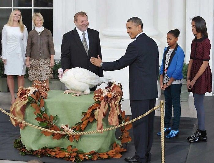 Барак Обама на церемонии помилования индейки в День благодарения