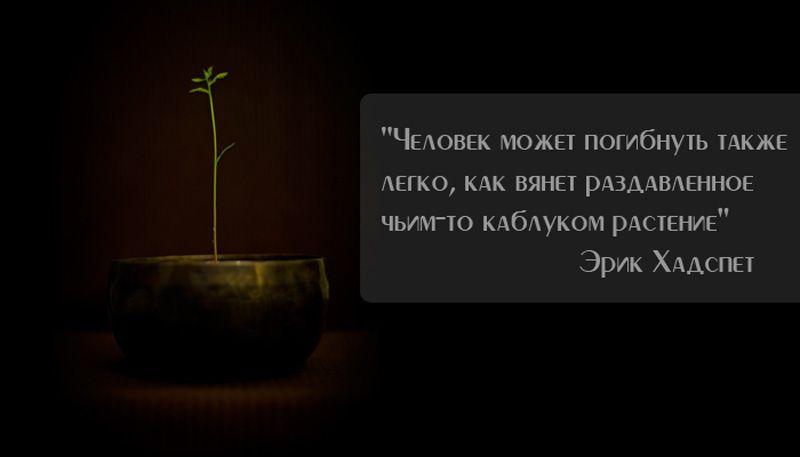 человек как растение