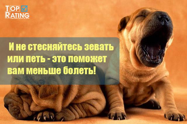 не стесняйтесь зевать