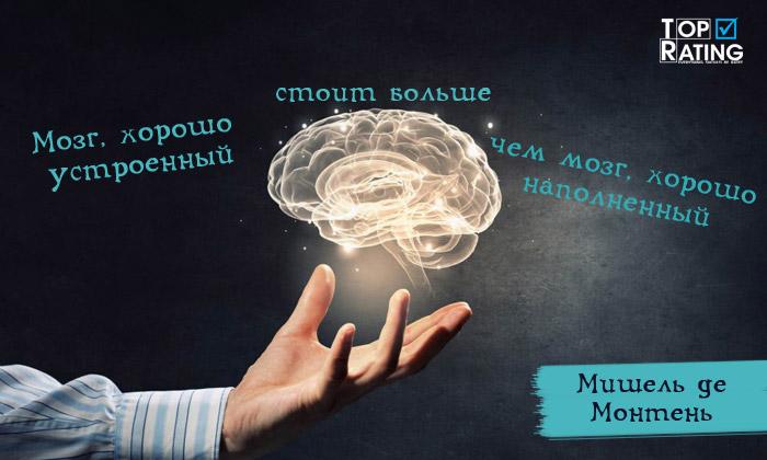 хорошо устроенный мозг