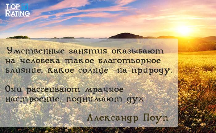 александр поуп цитаты